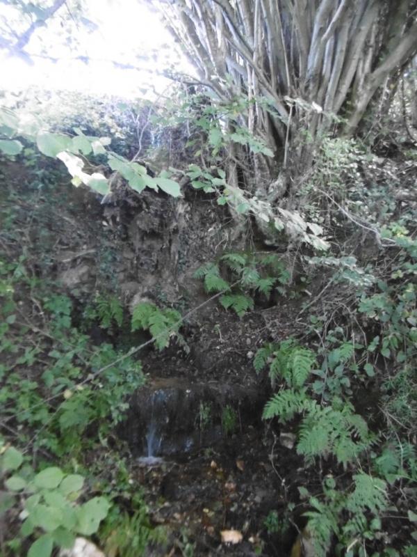 La fontaine des marches